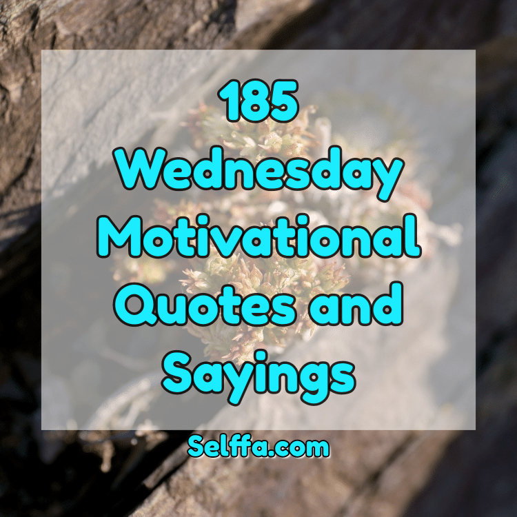 185 Wednesday Motivational Quotes And Sayings Selffa