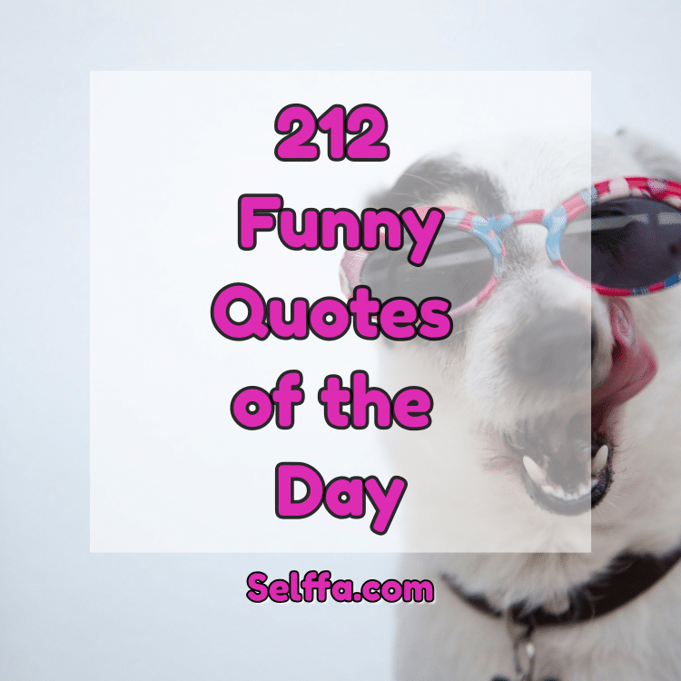 funny quotes of the day