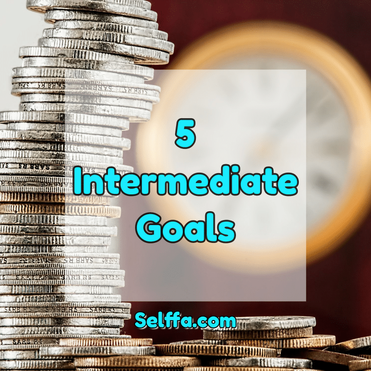 Intermediate Goals