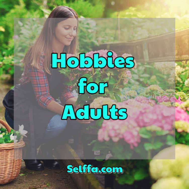 Hobbies for Adults
