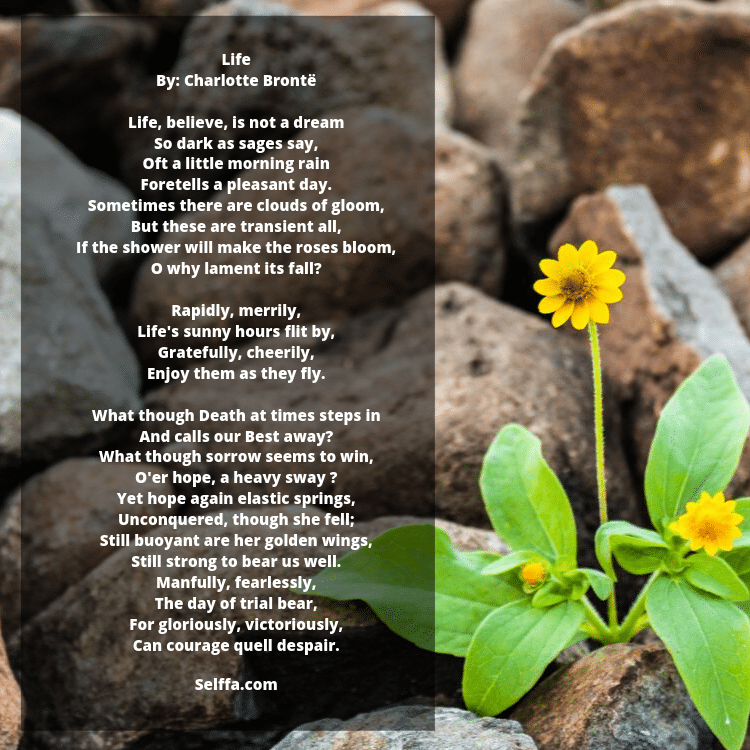 Poems About Life